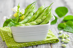 Green beans Stock Image