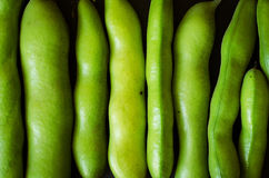 Green beans texture Stock Photography