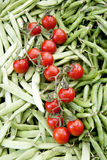 Green beans, tomatoes and green Stock Photography