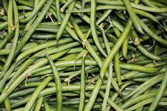 Green beans vegetable background stock images