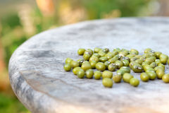 Green beans on wood table Royalty Free Stock Photography