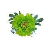 Green beautiful artificial flower isolate on white Royalty Free Stock Photography