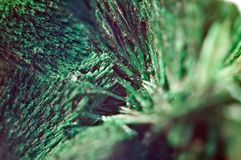Green beautiful background of natural mineral Malachite. Macro royalty free stock photo