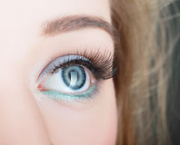 Green beautiful womanish eye Royalty Free Stock Image