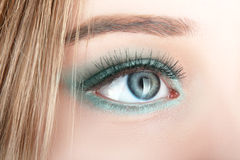 Green beautiful womanish eye Royalty Free Stock Images