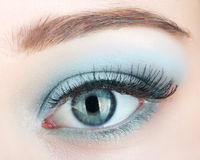 Green beautiful womanish eye Stock Photos