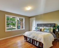 Green bedroom interior with hardwood floor and queen size bed. Royalty Free Stock Photo