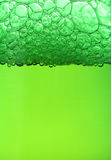 Green beer background Stock Photos