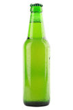 Green beer bottle Stock Images