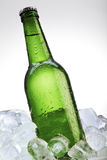 Green beer bottle on ice Stock Photos