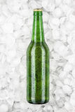 Green beer bottle in the ice Stock Photos