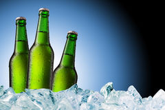 Green beer bottles on ice. Three green beer bottle on ice cubes with blue background Royalty Free Stock Photography