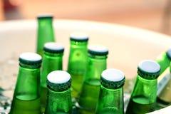 Green beer bottles in ice bucket Stock Photos