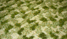 Green and beige texture in carpet. A green and beige textured pattern can be used as a background Royalty Free Stock Images