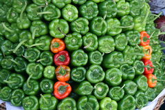 Green bell pepper Stock Image