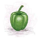 Green-bell-pepper Stock Photo