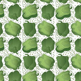 Green Bell Pepper Pattern Royalty Free Stock Photo