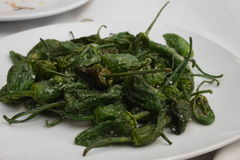 Green bell pepper - pimientos de padron Stock Photography
