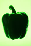 Green bell pepper silhouette. Stock Photos