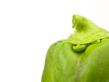 Green Bell Pepper top Stock Photo
