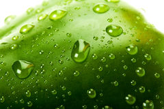 Green bell pepper with water droplets Royalty Free Stock Photo