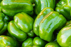Green bell peppers on display at the market Stock Images
