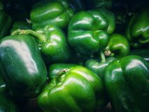 Green bell peppers. Green bell peppers resemble small sphere can be introduced to cook a variety of dishes eaten both fresh and cooked through Royalty Free Stock Image