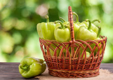 Green bell peppers in a wicker basket on  wooden table with  blurred background. Green bell peppers in a wicker basket on a wooden table with a blurred Stock Images