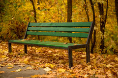Green bench in a golden park Stock Photo
