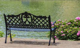 Green Bench near the Lake in Summer Royalty Free Stock Photos