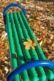 Green bench in the park. Green bench in the autumn park Stock Photos