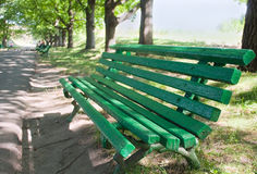 Green bench in a park Royalty Free Stock Images