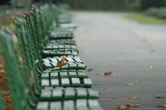 Green benches Royalty Free Stock Image