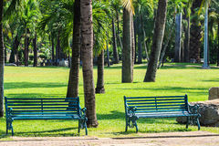Green Benches in Tropical Garden, Summer. Green Benches in Tropical Garden during Summertime Stock Image