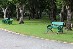 Green benches beside walkway. Royalty Free Stock Images