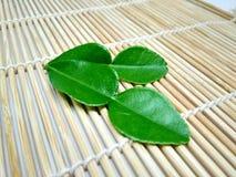 Green bergamot on the plank royalty free stock photography