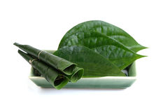 Green betel leaf isolated on the white background. Royalty Free Stock Photos