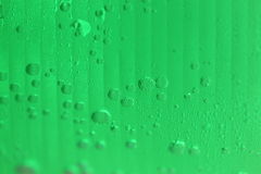 Green of beverages in plastic glass for abstract background. Stock Image