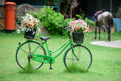 A Green bicycle has colorful flowers in basket Stock Photo
