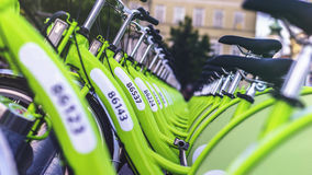 Green bicycles in rack Royalty Free Stock Images