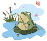 Green big frog. Cartoon Stock Photos