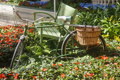 Green Bike in Garden Royalty Free Stock Photo