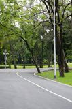 Green bike lane in the park. Natural green and calm bike lane in the park around with many tree royalty free stock photo