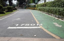 The green bike lane and white arrow painting parallel with jogging lane and white jogging man painting. On the line of 1750 meters distance Royalty Free Stock Photos