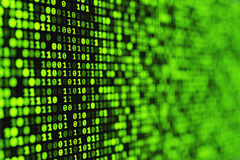 Green binary digital background. Stock Images