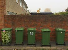 Green Bins for Rubbish Collection Royalty Free Stock Photos