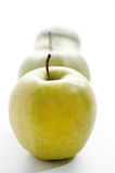 Green bio apples Royalty Free Stock Photos