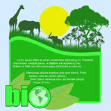 Green bio poster. With trees and wild animals and space for your text, vector illustration Stock Photo