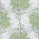 Green Birch Trees Decorative Drawing Seamless Pattern royalty free illustration