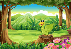 A green bird above the stump at the forest Royalty Free Stock Image